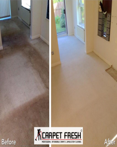 carpet cleaning in worksop